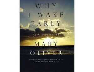 Why I Wake Early, by Mary Oliver
